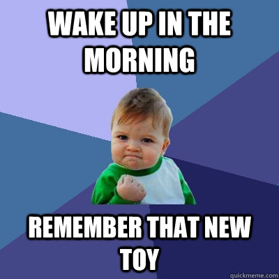 Wake up in the morning Remember that new toy - Wake up in the morning Remember that new toy  Success Kid