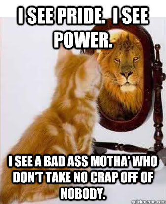 Cool Runnings Cat Memes Quickmeme