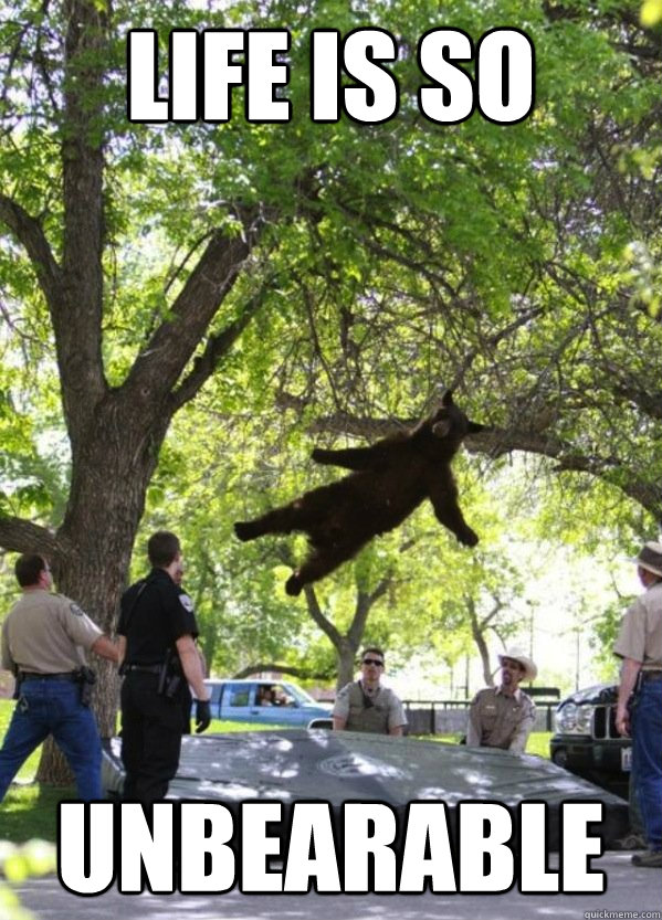 life is so unbearable  i am a falling bear