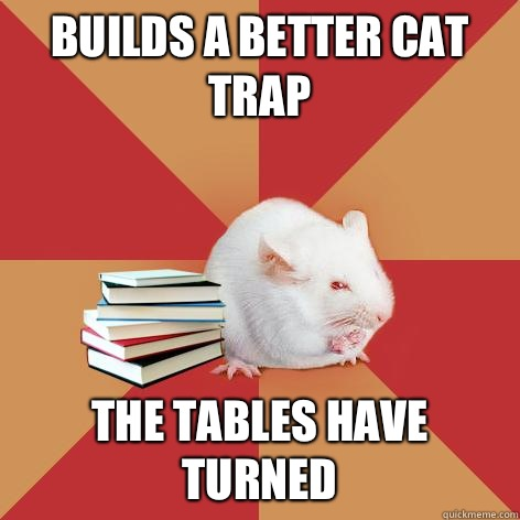Builds a better cat trap The tables have turned - Builds a better cat trap The tables have turned  Science Major Mouse