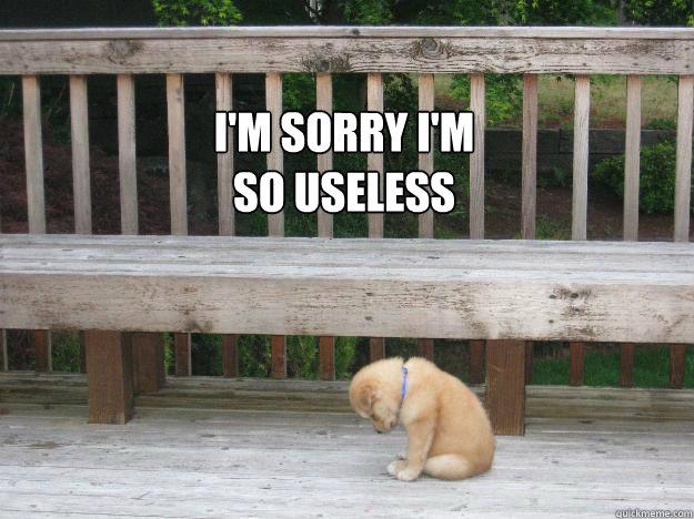 I'm sorry I'm  so useless   Sorry
