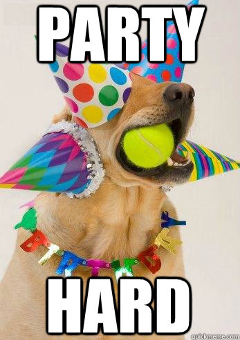 Party HARD  birthday dog