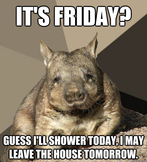 It's Friday? Guess I'll shower today, I may leave the house tomorrow.  Work From Home Wombat