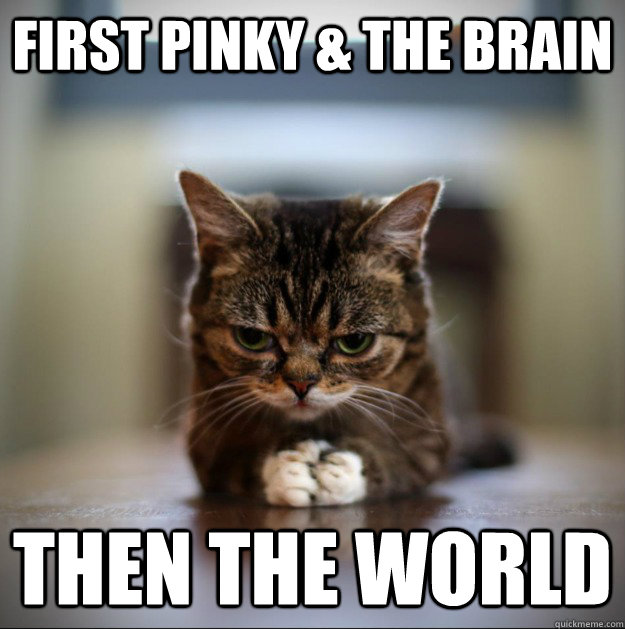 First Pinky & the brain Then the world