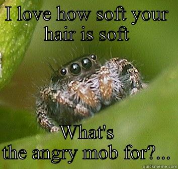I LOVE HOW SOFT YOUR HAIR IS SOFT WHAT'S THE ANGRY MOB FOR?... Misunderstood Spider