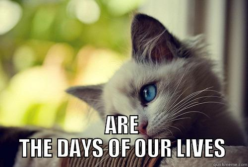 AND THESE -  ARE THE DAYS OF OUR LIVES First World Problems Cat
