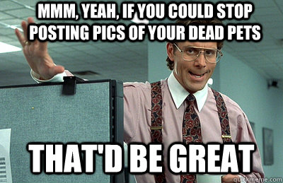 Mmm, yeah, If you could stop posting pics of your dead pets that'd be great - Mmm, yeah, If you could stop posting pics of your dead pets that'd be great  Office Space