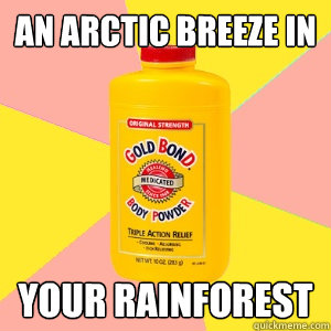 an Arctic breeze in your rainforest