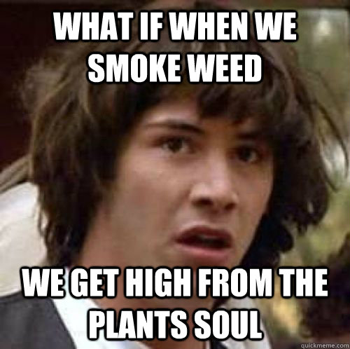 What if when we smoke weed we get high from the plants soul - What if when we smoke weed we get high from the plants soul  conspiracy keanu