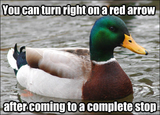 You can turn right on a red arrow after coming to a complete stop - You can turn right on a red arrow after coming to a complete stop  Actual Advice Mallard