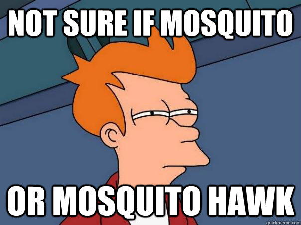 Not sure if mosquito or mosquito hawk - Not sure if mosquito or mosquito hawk  Futurama Fry