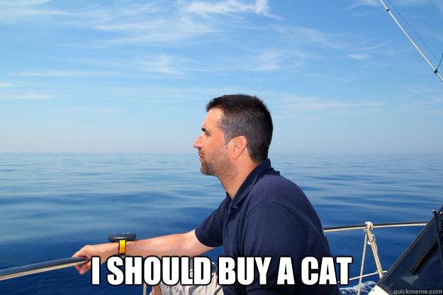 I should buy a cat -  I should buy a cat  Misc