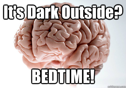 It's Dark Outside? BEDTIME! - It's Dark Outside? BEDTIME!  Misc