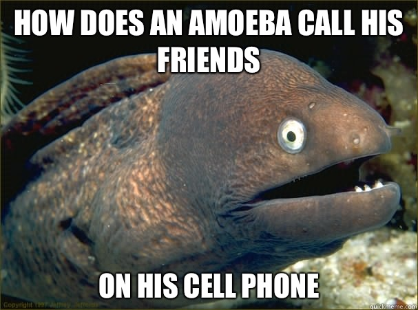 How does an amoeba call his friends On his cell phone  - How does an amoeba call his friends On his cell phone   Bad Joke Eel