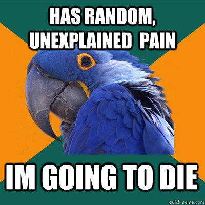 Has random, unexplained  pain im going to die - Has random, unexplained  pain im going to die  Paranoid Parrot