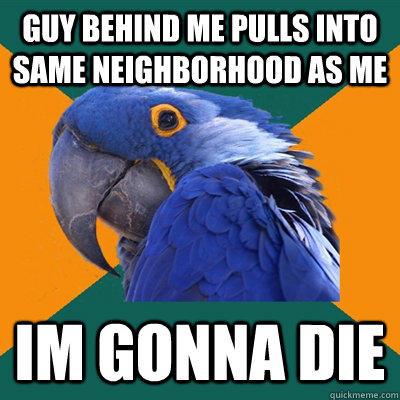 Guy behind me pulls into same neighborhood as me Im gonna die - Guy behind me pulls into same neighborhood as me Im gonna die  Paranoid Parrot