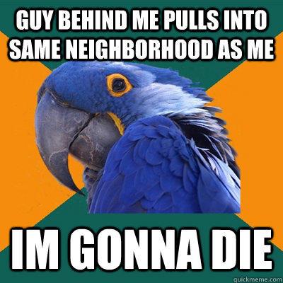 Guy behind me pulls into same neighborhood as me Im gonna die  Paranoid Parrot