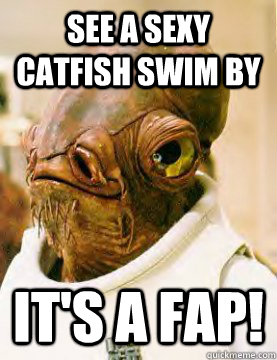 see a sexy catfish swim by It's a fap! - see a sexy catfish swim by It's a fap!  Admiral Ackbar Grylls