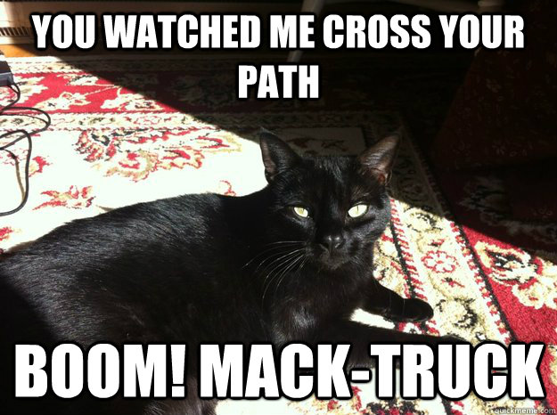 You watched me cross your path Boom! Mack-truck  Friday the 13th Cat