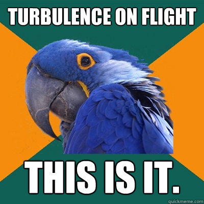 Turbulence on Flight  THIS IS IT. - Turbulence on Flight  THIS IS IT.  Paranoid Parrot