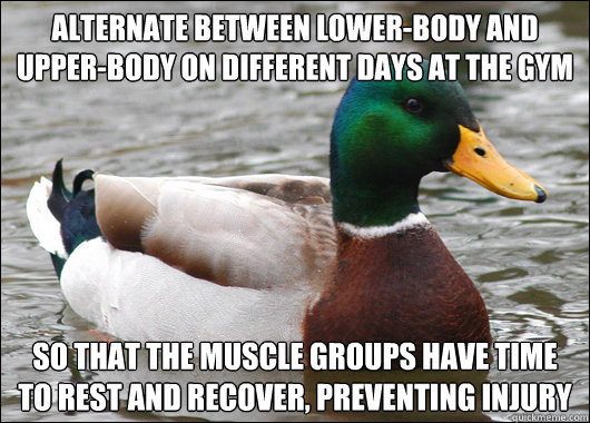Alternate between lower-body and upper-body on different days at the gym So that the muscle groups have time to rest and recover, preventing injury - Alternate between lower-body and upper-body on different days at the gym So that the muscle groups have time to rest and recover, preventing injury  Actual Advice Mallard