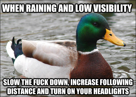 When raining and low visibility slow the fuck down, increase following distance and turn on your headlights - When raining and low visibility slow the fuck down, increase following distance and turn on your headlights  Actual Advice Mallard