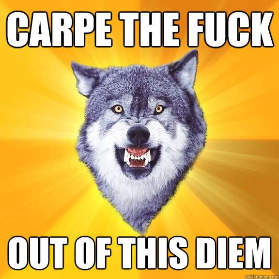 Carpe the Fuck Out of this diem - Carpe the Fuck Out of this diem  Courage Wolf