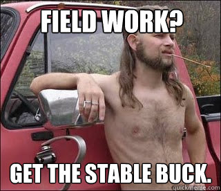 Field work? Get the stable buck.