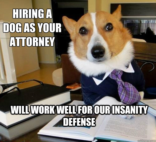 Hiring a dog as your attorney Will work well for our insanity defense  - Hiring a dog as your attorney Will work well for our insanity defense   Lawyer Dog