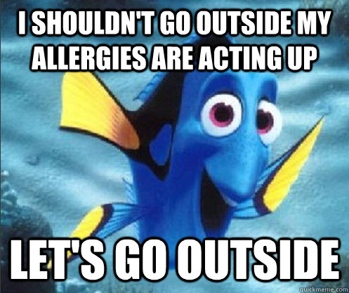 I shouldn't go outside my allergies are acting up Let's go outside - I shouldn't go outside my allergies are acting up Let's go outside  optimistic dory