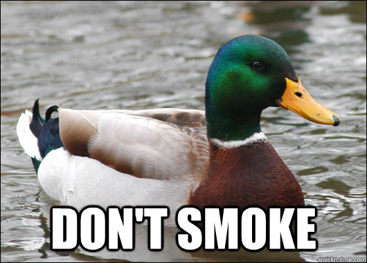 Don't Smoke -  Don't Smoke  Actual Advice Mallard