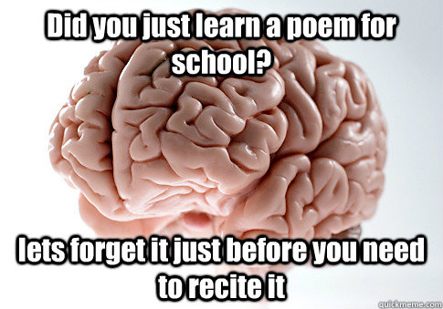 Did you just learn a poem for school? lets forget it just before you need to recite it  - Did you just learn a poem for school? lets forget it just before you need to recite it   Scumbag Brain