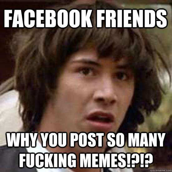 8da1c3176b256a26edcaac4c92a87fb5a831bc7a7e6416337c2b73f664ab9f64 facebook friends why you post so many fucking memes,How Do You Post Memes On Facebook