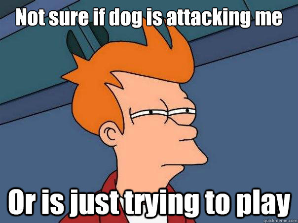 Not sure if dog is attacking me Or is just trying to play - Not sure if dog is attacking me Or is just trying to play  Futurama Fry