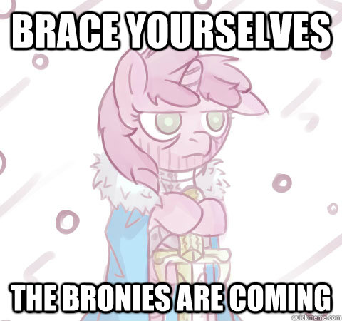 Brace yourselves The Bronies are coming - Brace yourselves The Bronies are coming  Brace yourself Pony