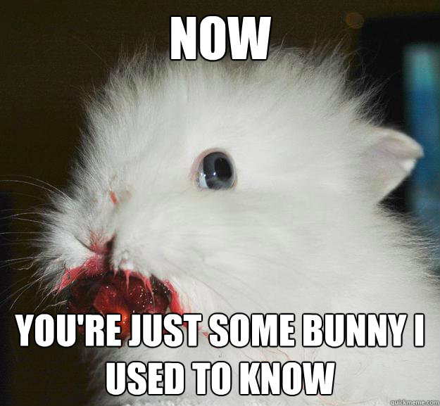 Now you're just some bunny I used to know