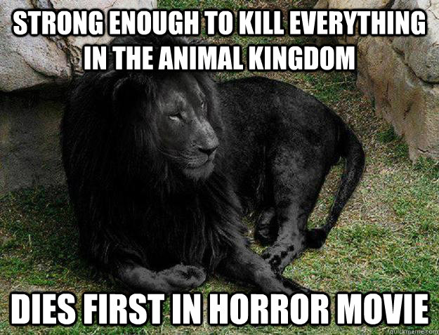 Strong enough to kill everything in the animal kingdom Dies first in horror movie - Strong enough to kill everything in the animal kingdom Dies first in horror movie  Black Lion Problems
