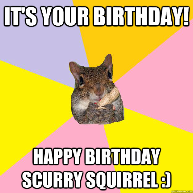 It's your birthday! Happy Birthday Scurry Squirrel :)