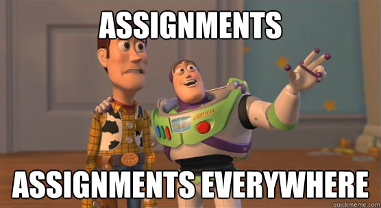 envi assignment hahaha