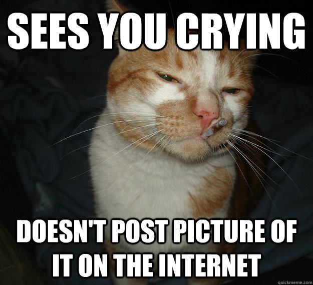 sees you crying doesn't post picture of it on the internet - sees you crying doesn't post picture of it on the internet  Cool Cat Craig
