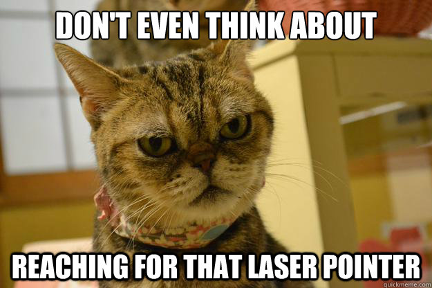 don't even think about reaching for that laser pointer