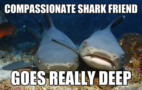 Compassionate Shark Friend goes really deep - Compassionate Shark Friend goes really deep  Compassionate Shark Friend