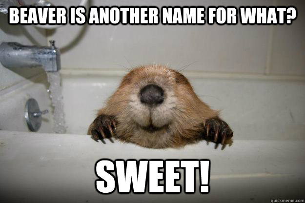 Beaver is another name for what? Sweet!