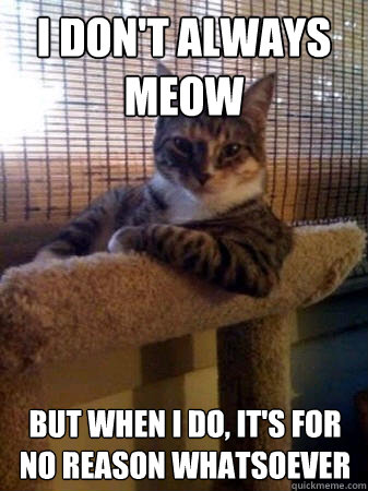 I don't always meow but when I do, It's for no reason whatsoever - I don't always meow but when I do, It's for no reason whatsoever  The Most Interesting Cat in the World