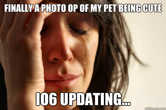 finally a photo op of my pet being cute io6 updating... - finally a photo op of my pet being cute io6 updating...  First World Problems