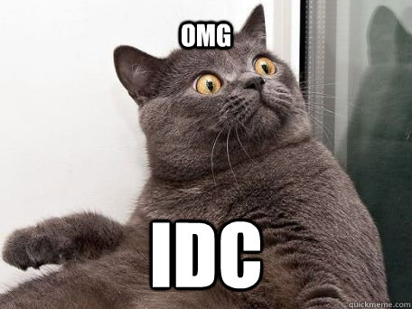 omg idc - conspiracy cat - quickmeme