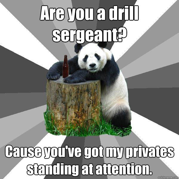 Are you a drill sergeant? Cause you've got my privates standing at attention. - Are you a drill sergeant? Cause you've got my privates standing at attention.  Pickup-Line Panda