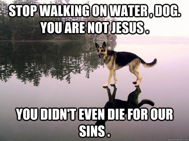Stop walking on water , dog. You are not jesus . You didn't even die for our sins .