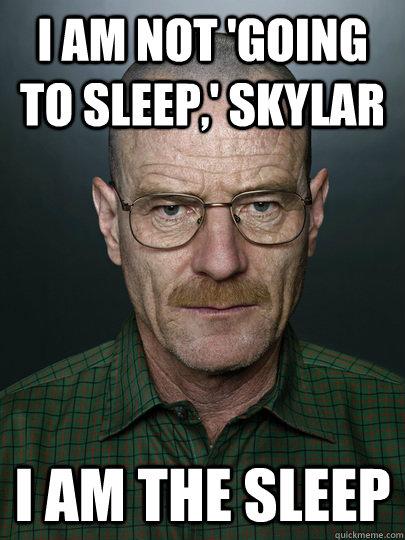 8ebbf346297a66c911ac60ff70bc5e115078d3d5bc14324632c14fdcaf07df28 i am not 'going to sleep,' skylar i am the sleep advice walter