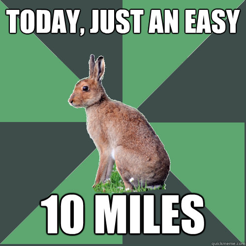 Today, just an easy 10 miles  Harrier Hare